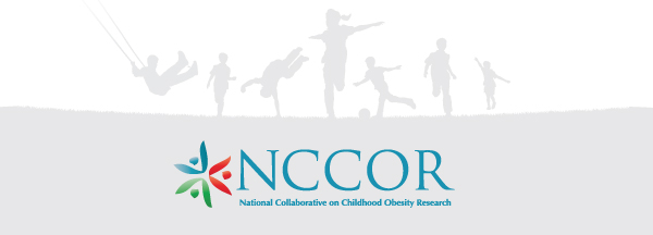 NCCOR Logo and footer graphic